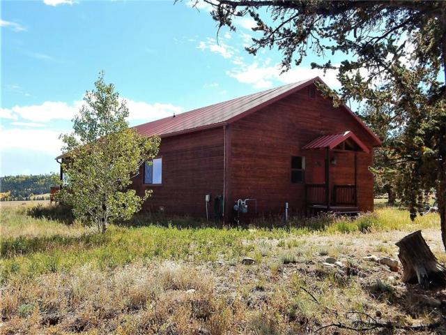 1876 Mullenville Road, Fairplay, CO 80440 (MLS #S1012297) :: Resort Real Estate Experts