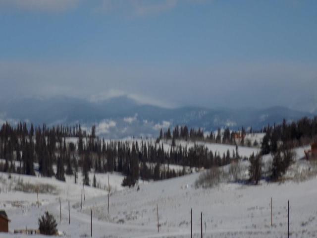 356 Hopi Circle, Como, CO 80432 (MLS #S1012299) :: Resort Real Estate Experts
