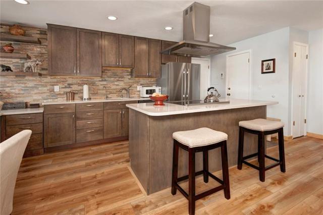 240 E La Bonte Street E #17, Dillon, CO 80435 (MLS #S1012377) :: Colorado Real Estate Summit County, LLC
