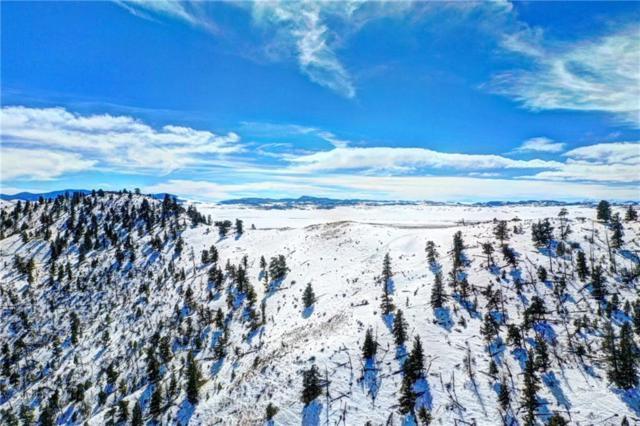 1595 Sulphur Mountain Road, LAKE GEORGE, CO 80827 (MLS #S1012381) :: Colorado Real Estate Summit County, LLC