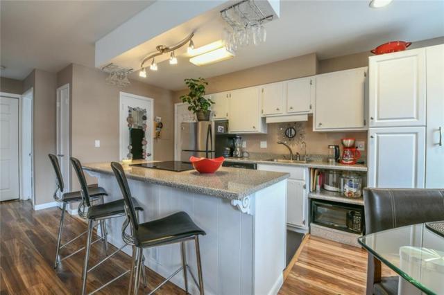 240 E La Bonte Street E #5, Dillon, CO 80435 (MLS #S1012391) :: Colorado Real Estate Summit County, LLC