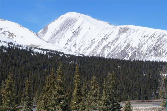 517 Hamilton Lane, Breckenridge, CO 80443 (MLS #S1012429) :: Resort Real Estate Experts