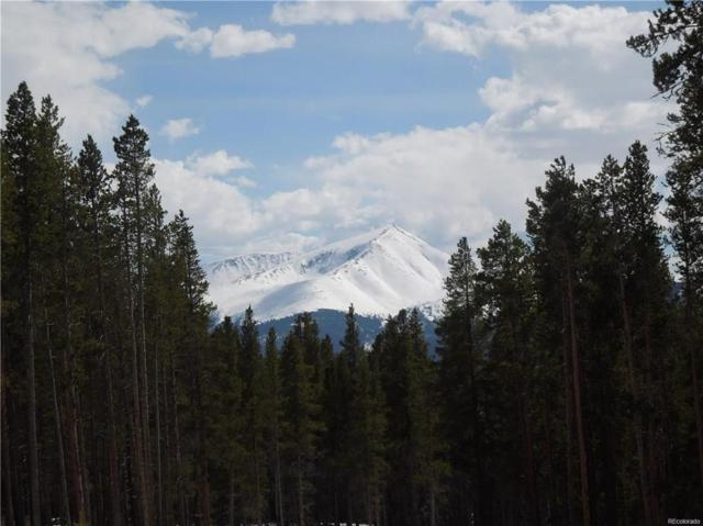 15 Elk Trail, Leadville, CO 80461 (MLS #S1012533) :: Colorado Real Estate Summit County, LLC