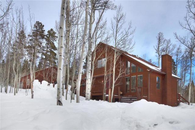 505 Warm Springs Road, Fairplay, CO 80440 (MLS #S1012564) :: Resort Real Estate Experts
