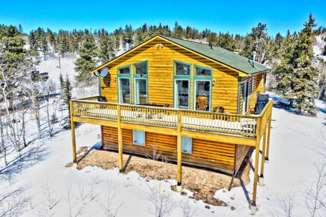 1213 Ute Trail, Como, CO 80432 (MLS #S1012573) :: Resort Real Estate Experts