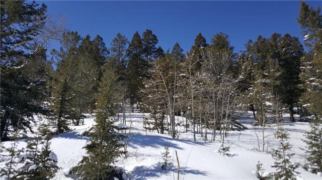 Lot 499 Redhill Road, Fairplay, CO 80440 (MLS #S1012598) :: Resort Real Estate Experts