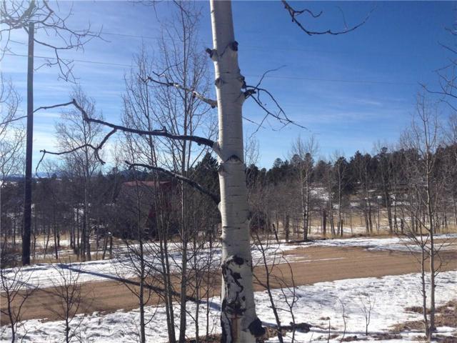 55 Bear Gulch Way, Jefferson, CO 80456 (MLS #S1012628) :: Colorado Real Estate Summit County, LLC