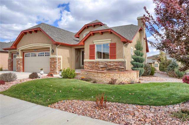 13273 Dominus Way, Other, CO 80921 (MLS #S1012669) :: Resort Real Estate Experts