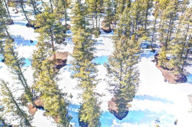 2293 Redhill Road, Fairplay, CO 80440 (MLS #S1012748) :: Resort Real Estate Experts
