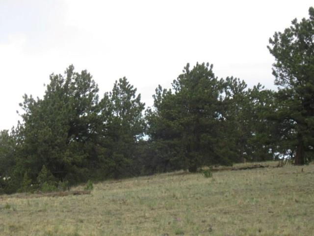 2159 Arapahoe Trail, Jefferson, CO 80456 (MLS #S1012751) :: Resort Real Estate Experts
