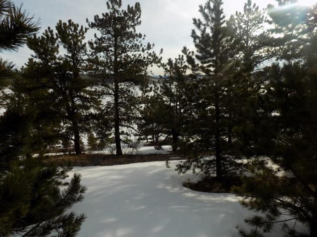 TBD Redhill Road, Fairplay, CO 80440 (MLS #S1012792) :: Resort Real Estate Experts
