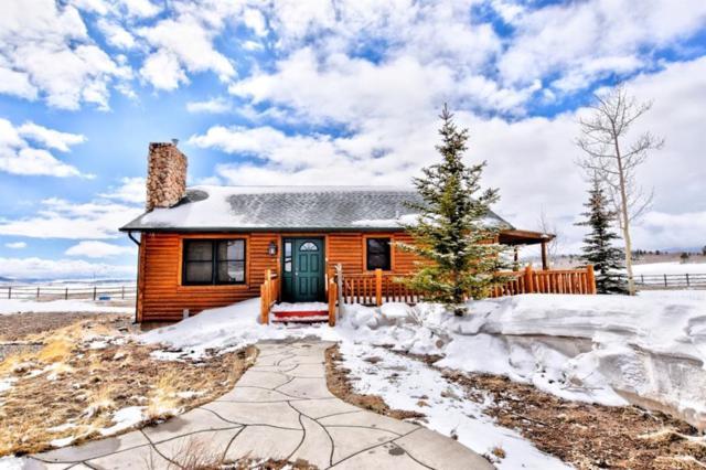 214 Fuller B, Fairplay, CO 80440 (MLS #S1012819) :: Resort Real Estate Experts