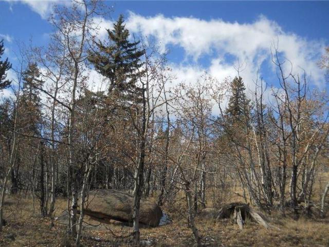 43 Folsom Drive, Como, CO 80432 (MLS #S1012869) :: Resort Real Estate Experts