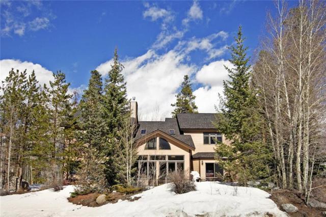 395 Black Hawk Circle, Silverthorne, CO 80498 (MLS #S1012904) :: Colorado Real Estate Summit County, LLC