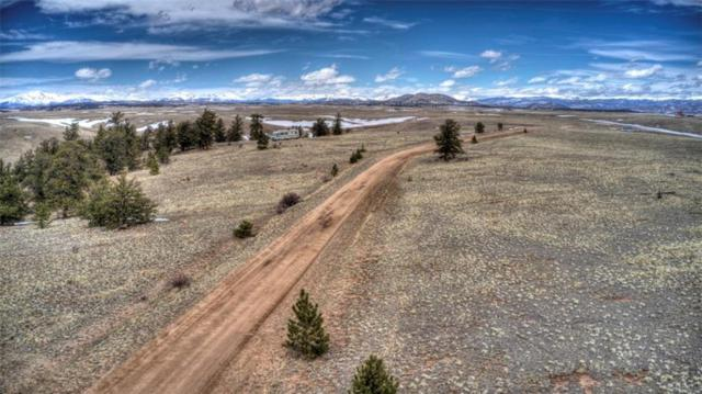 607 Shenandoah Path, Hartsel, CO 80449 (MLS #S1012907) :: Resort Real Estate Experts