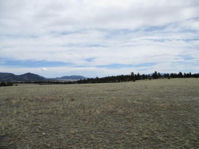 00 Ako Trail, Hartsel, CO 80449 (MLS #S1012964) :: Colorado Real Estate Summit County, LLC