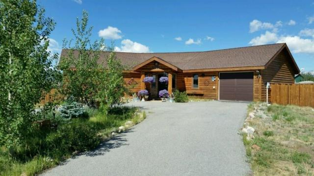 1225 Meadow Drive, Fairplay, CO 80440 (MLS #S1012966) :: Colorado Real Estate Summit County, LLC