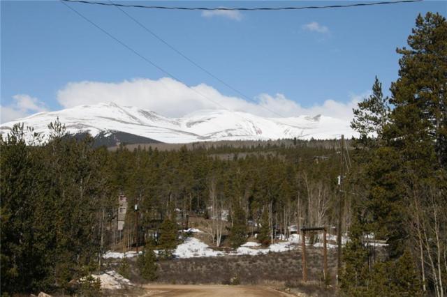 687 Wheat Way, Fairplay, CO 80440 (MLS #S1013022) :: Colorado Real Estate Summit County, LLC