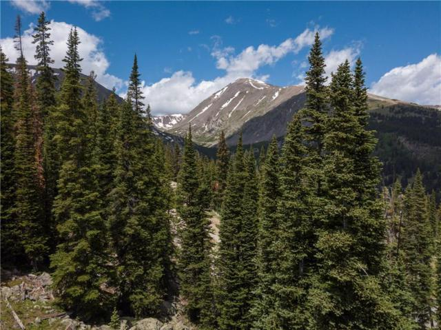 325 Quandary View Drive, Breckenridge, CO 80424 (MLS #S1013028) :: Resort Real Estate Experts