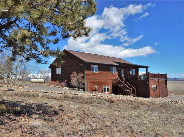 1229 Sheep Ridge Road, Fairplay, CO 80440 (MLS #S1013047) :: Resort Real Estate Experts
