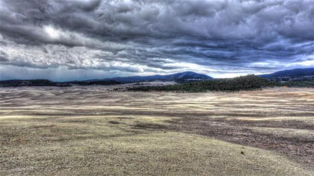 166 Rein Way, Hartsel, CO 80449 (MLS #S1013061) :: Colorado Real Estate Summit County, LLC