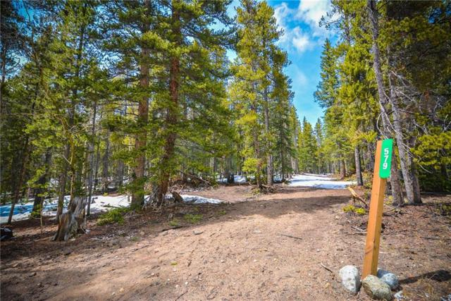 579 Rollies Trail, Alma, CO 80440 (MLS #S1013063) :: Resort Real Estate Experts