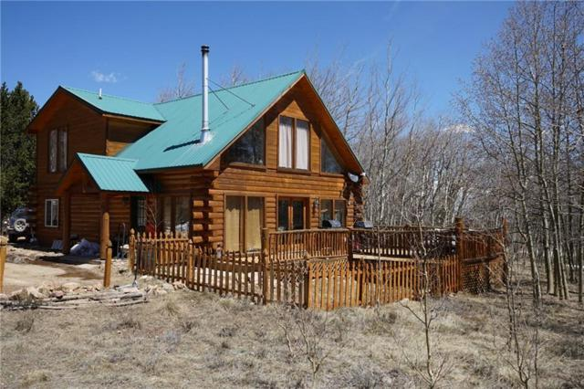 118 Lamb Mountain Road, Fairplay, CO 80440 (MLS #S1013124) :: Resort Real Estate Experts