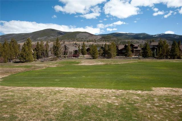300 Elk Circle Circle, Keystone, CO 80435 (MLS #S1013142) :: Resort Real Estate Experts