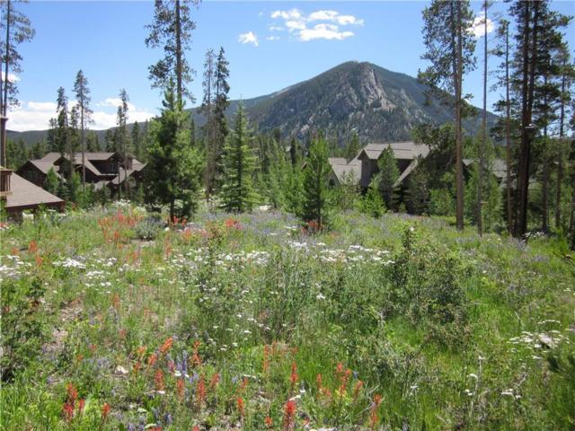 103 Rose Crown Circle, Frisco, CO 80443 (MLS #S1013156) :: Colorado Real Estate Summit County, LLC