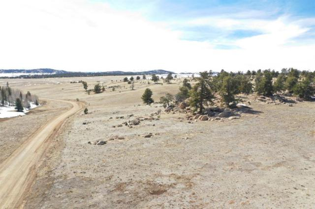 2427 Ute, Hartsel, CO 80449 (MLS #S1013174) :: Colorado Real Estate Summit County, LLC