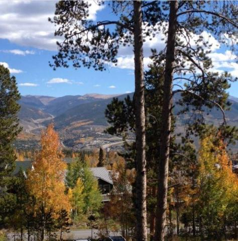 2100 Lodge Pole Circle #202, Silverthorne, CO 80498 (MLS #S1013198) :: Resort Real Estate Experts