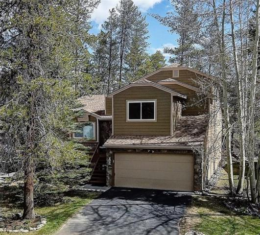 360 N 7th Avenue, Frisco, CO 80443 (MLS #S1013276) :: Colorado Real Estate Summit County, LLC