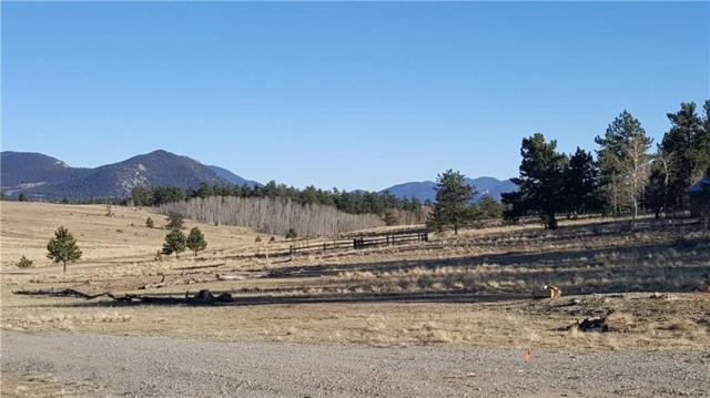 1029 Superstition Trail, Hartsel, CO 80449 (MLS #S1013304) :: Colorado Real Estate Summit County, LLC
