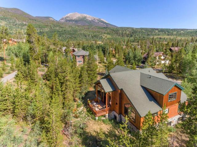 149 Rose Crown Circle, Frisco, CO 80443 (MLS #S1013348) :: Colorado Real Estate Summit County, LLC