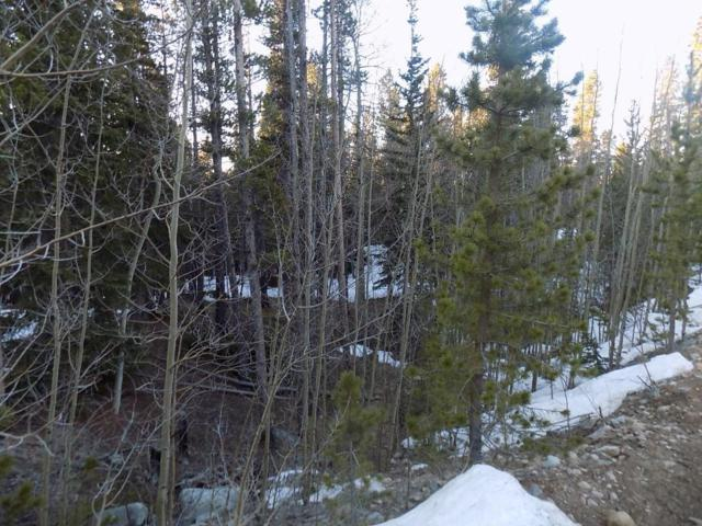 86 Widdowfield Circle, Fairplay, CO 80440 (MLS #S1013366) :: Colorado Real Estate Summit County, LLC
