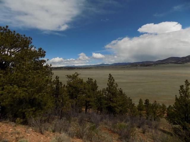 352 Settele Drive, Hartsel, CO 80449 (MLS #S1013409) :: Resort Real Estate Experts