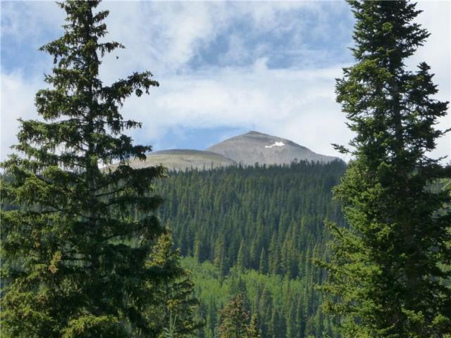 0356 Hamilton Lane, Breckenridge, CO 80424 (MLS #S1013414) :: Colorado Real Estate Summit County, LLC