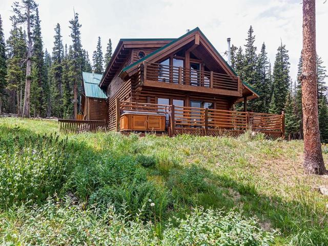 237 Hamilton Lane, Breckenridge, CO 80424 (MLS #S1013417) :: Resort Real Estate Experts
