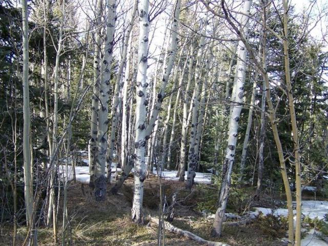 388 Fremont Knoll, Jefferson, CO 80456 (MLS #S1013447) :: Colorado Real Estate Summit County, LLC