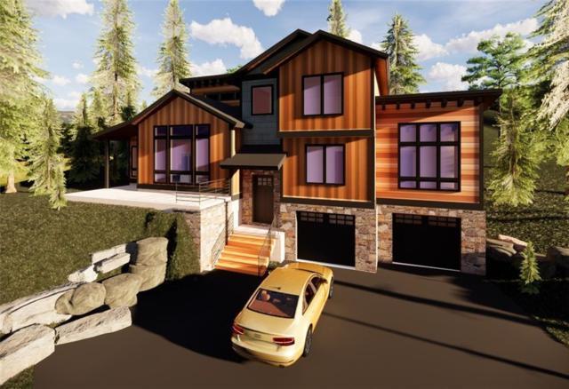 1259 Baldy Road, Breckenridge, CO 80424 (MLS #S1013496) :: Resort Real Estate Experts
