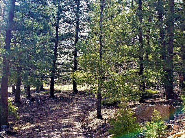 2468 Redhill Road, Fairplay, CO 80440 (MLS #S1013517) :: Colorado Real Estate Summit County, LLC