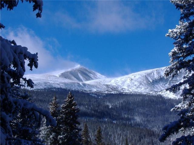 592 Doris Drive, Breckenridge, CO 80424 (MLS #S1013521) :: Colorado Real Estate Summit County, LLC