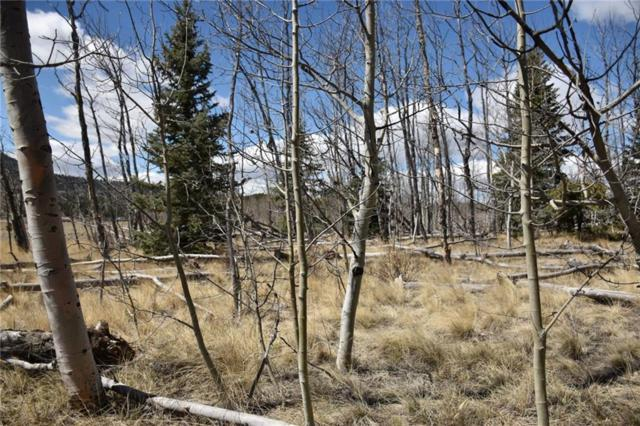 2941 Stagestop Road, Jefferson, CO 80456 (MLS #S1013536) :: Colorado Real Estate Summit County, LLC