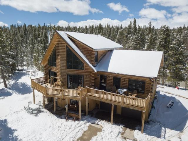 1141 Deer Trail Drive, Fairplay, CO 80440 (MLS #S1013537) :: Colorado Real Estate Summit County, LLC
