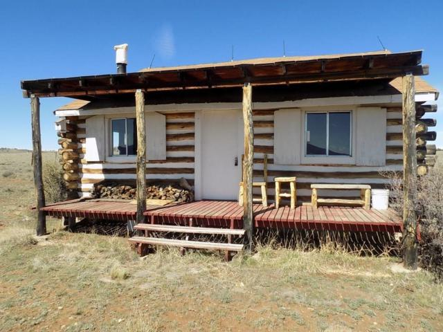 2703 Rhyolite Drive, Como, CO 80432 (MLS #S1013549) :: Resort Real Estate Experts