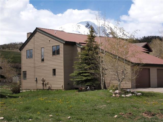 393 W Coyote Drive, Silverthorne, CO 80498 (MLS #S1013615) :: Colorado Real Estate Summit County, LLC