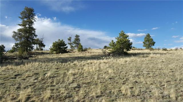 1920 Yellowstone Road, Hartsel, CO 80449 (MLS #S1013624) :: Colorado Real Estate Summit County, LLC