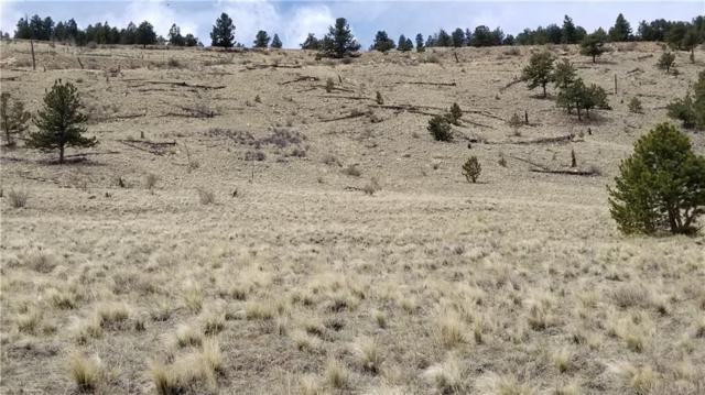 3701 Tbd Redhill Road, Fairplay, CO 80440 (MLS #S1013662) :: Colorado Real Estate Summit County, LLC