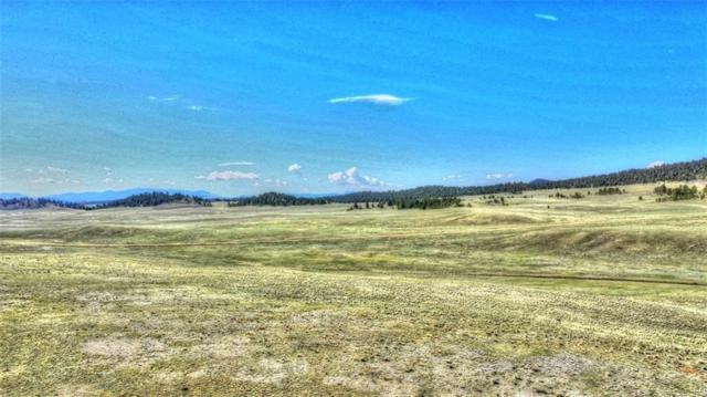 372 Commanche Trail, Hartsel, CO 80449 (MLS #S1013663) :: Resort Real Estate Experts