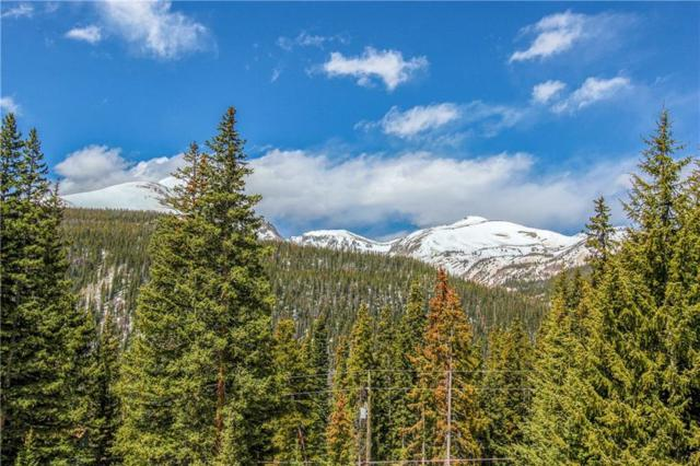 874 Range Road, Breckenridge, CO 80424 (MLS #S1013694) :: Resort Real Estate Experts